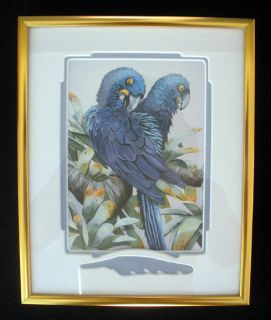 James w Harris Macaw Parrot Blue Bird Watercolor Painting Print Framed