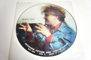 Cocteau Twins Limited Edition Interview Picture Disc LP Vinyl Record