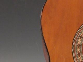 Hondo 2 Acoustic Guitar Model Hoon