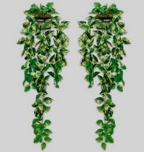 Artificial Ivy Vine Leaf Foliage House Plant Wall Pot Holder Fabric