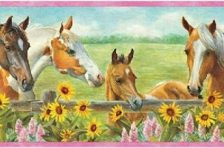Sunflower Horse and Colt Pink Wallpaper Border