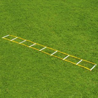 Fisher 12 Single Speed Ladders WHITE/GOLD 16 W X 12 L