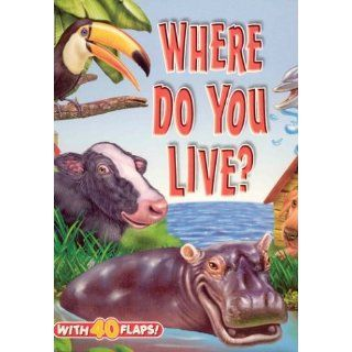 Where Do You Live? (Big Fun Super Flap Book) K. R. Knight