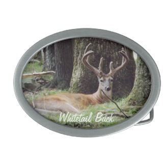 Whitetail Deer Buck in Summer Belt Buckle