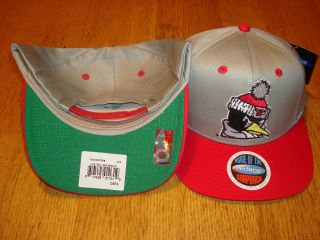 Youngstown State University Penguins Snapback Hat RARE Fast Shipping