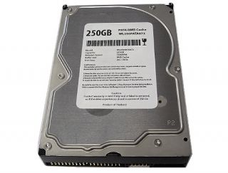 Cache 7200RPM Ultra ATA 100 IDE PATA 3 5 Desktop Hard Drive