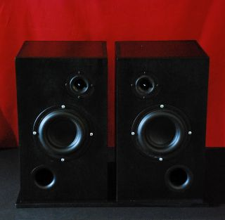 Full Range Bookshelf Speakers Deep Bass Russian Birch Finish in Black