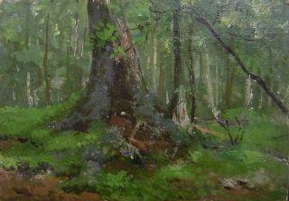 Fine Antique Oil Painting Belgian Tree Trunk c1900 on Board