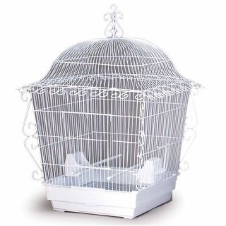 Birdcage Wrought Iron Bird Sanctuary Pet Cage Habitat 5 8
