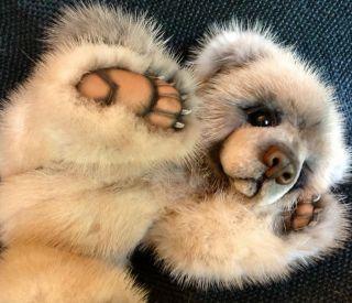 Fur Realistic 10 Baby Bear by Teddy Bear Artist Jenea Ivey
