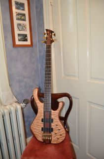 John Hill Huntington Elite 5 String Bass Guitar