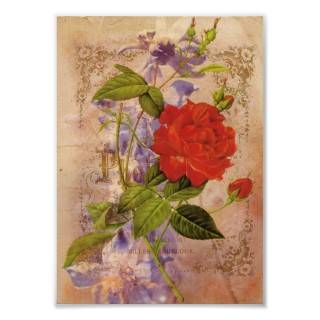 Florals Vintage Digital Collage Print from Zazzle