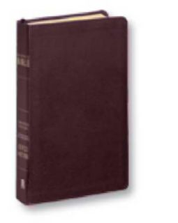 Burgandy Leather Joyce Meyer The Everyday Life Bible Free Fast Shipping