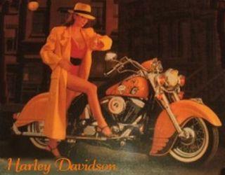 Harley Davidson Gal Large Magnet Collectible Unique