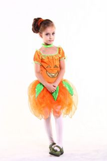 New Light Up Pumpkin Fairy Girl Kids Child Halloween Costume Set Small