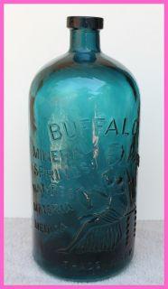 Beautiful Deep Blue Green Buffalo Lithia Mineral Springs Water Bottle