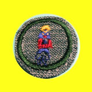 CRAFT 1930s RARE Girl Scout Badge, Indian Lore, Totem, Kachina Doll