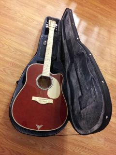 Esteban Master Class Series Guitar Acoustic Electric with Case