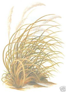 Sea Oats Wall Decor Wall Decal Art Transfer