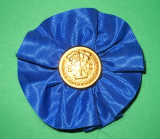 South Carolina Secession Cockade Rosette Hat Pin Badge