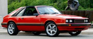 D140 1983 Mercury Capri Complete Crimson Cat Stripe Decal Kit