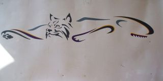 RV BOAT CAR TRAILER GRAPHIC DECALS BOBCAT