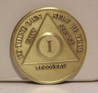 Year Recovery 1 Yr Chip Medallion Coin Medal Token AA Anonymous