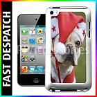 Big Eyed Cute Dog in Christmas Holiday Costume Case For iPod Touch 4th