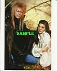 Comic Con Labyrinth Amulet Goblin King David Bowie