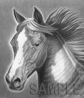 horse/paint horse/pinto/ar t/black & white/drawing/ signed print
