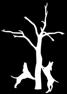dog treeing a coon decal