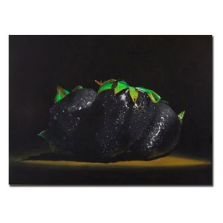 Trademark Global Inc Black Strawberries Canvas Art by Roderick Stevens   RS845
