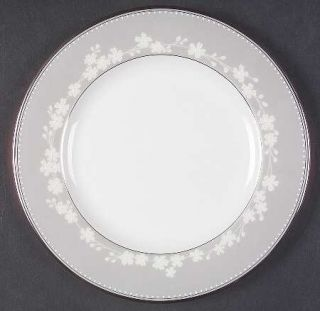 Lenox China Bellina Platinum Trim Salad Plate, Fine China Dinnerware   White Flo