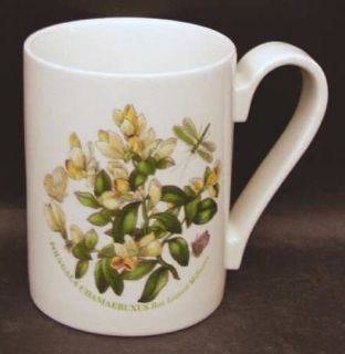 ... Portmeirion Botanic Garden Mug Fine China Dinnerware Various Plants u0026 Insects ... & Portmeirion Botanic Garden Mandarin Mug Fine China Dinnerware ...