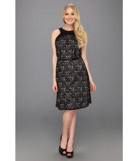 Donna Morgan Lace Dress w/ Belted Waist Womens Dress (Black)