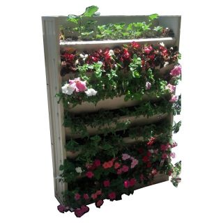 ecoConcepts Living Wall Vertical Planter Multicolor   EPVP001 32W45H