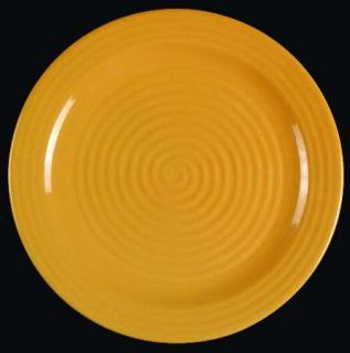 Home Trends Hts16 Dinner Plate, Fine China Dinnerware   All Yellow, Embossed Rin